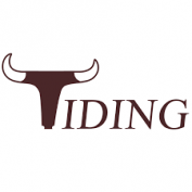 TIDING